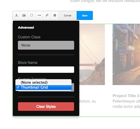 custom_template_options.png
